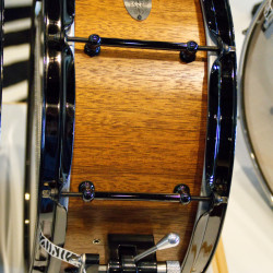 Zebra_Drums_05